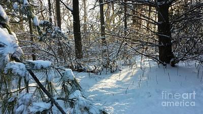 Come Warmth Of Winter's Sun Art Print