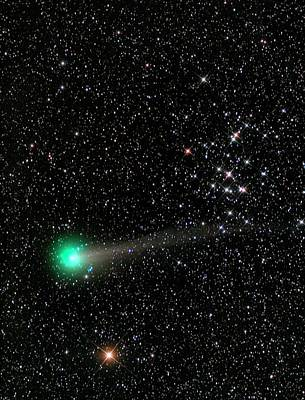 21st Century Photograph - Comet C2013 R1 And Star Cluster M44 by Damian Peach