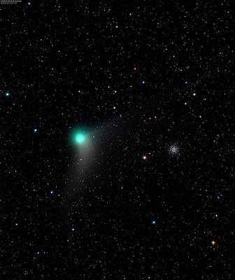 Gaseous Coma Photograph - Comet C2013 Us10 by Damian Peach