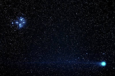 Pleiades Photograph - Comet Lovejoy by Babak Tafreshi