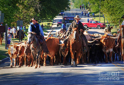 Cattle Drive Photograph - Coming Through by Fred Lassmann