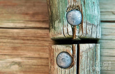 Wooden Fence Post Photograph - Coming Together by Dan Holm
