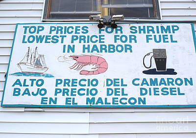 Commercial Shrimp Business In Ft Myers Florida Posted Sign Art Print by Robert Birkenes