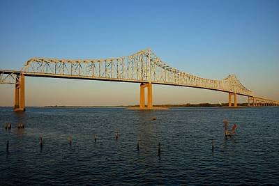 Photograph - Commodore Barry Bridge by Steven Richman