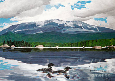 Loon Painting - Common Loon On Togue Pond By Mount Katahdin by Stella Sherman