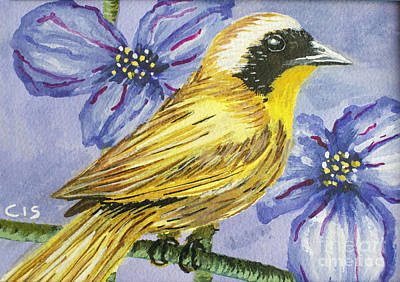 Painting - Common Yellow Warbler by Cecilia Stevens