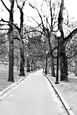 Commons Park Pathway Art Print