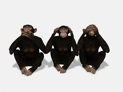 Ape Photograph - Communication by Juan Gaertner