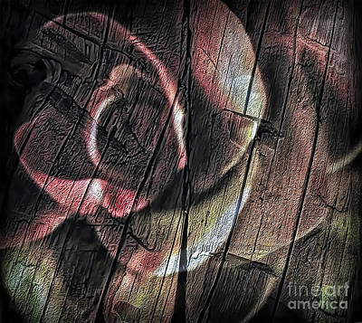 Photograph - Rough Wood Rose 1 by Walt Foegelle