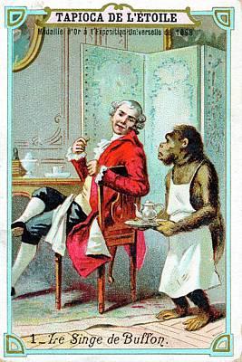 Comte De Buffon Art Print by Universal History Archive/uig