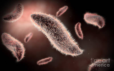 Conceptual Image Of Paramecium Art Print by Stocktrek Images