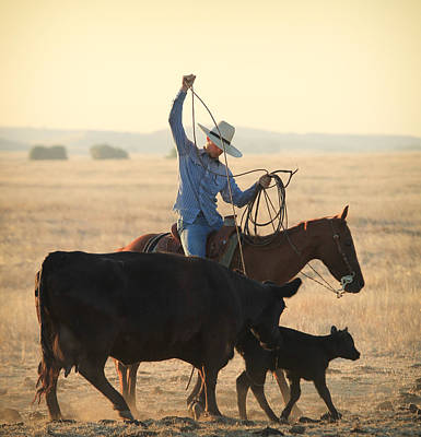 Working Cowboy Photograph - Concerned Mother by Diane Bohna