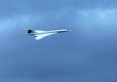 Photograph - Concorde In Flight by Robert  Rodvik