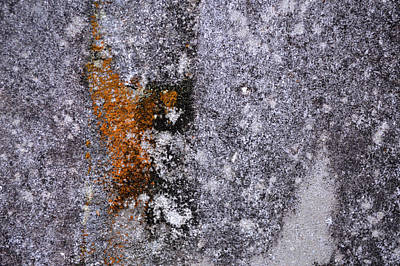 Photograph - Concrete Abstract - Cave Painting by rd Erickson