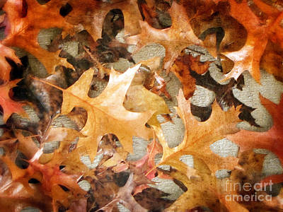 Photograph - Concrete Autumn by Tikvah's Hope