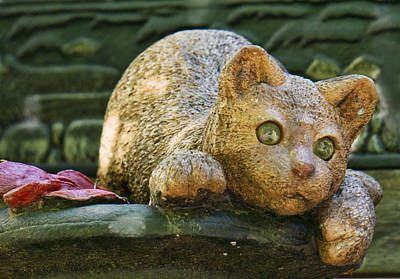 Photograph - Concrete Cat by Ron Roberts