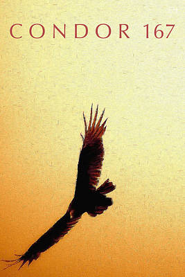 Condor Digital Art - Condor 167 by Jim Pavelle