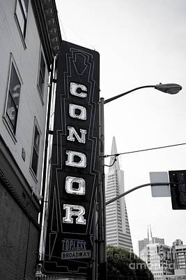 Condor Wall Art - Photograph - Condor On Columbus by David Bearden
