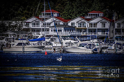 Photograph - Condos And Docks by Ronald Grogan