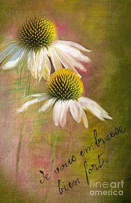Cone Flower Couple Art Print by Norma Warden