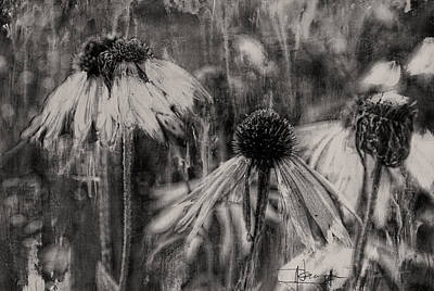 Mixed Media - Cone Flowers In Late Autumn by Jim Vance