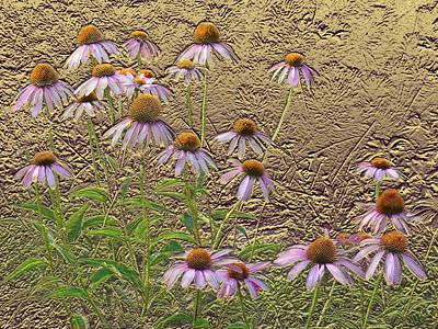 Venice Beach Bungalow - Cone Flowers by Steve Karol