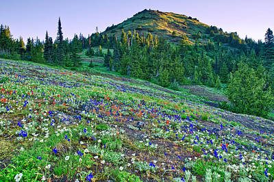 Photograph - Cone Peak And Wildflowers by Stuart Gordon