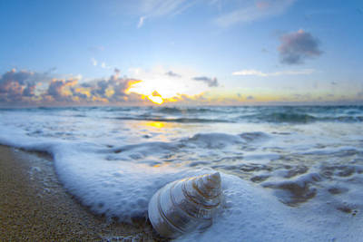 Sunrise At The Beach Photograph - Cone Shell Foam by Sean Davey