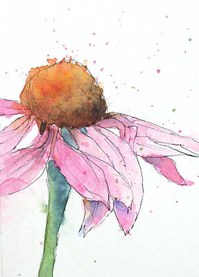 Coneflower 2 Art Print