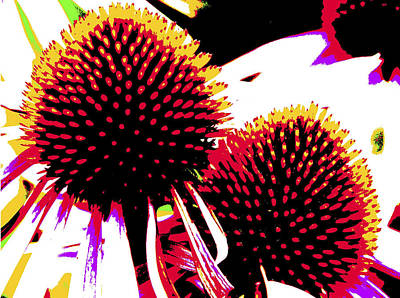 Photograph - Coneflower Abstract by Robert Camp
