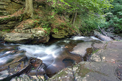 Photograph - Conestoga Falls From The Top by Gene Walls