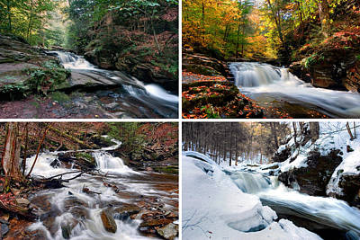 Photograph - Conestoga Falls In Every Season by Gene Walls
