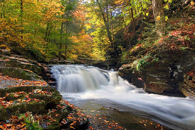 Photograph - Conestoga Falls On Kitchen Creek In The Fall by Gene Walls
