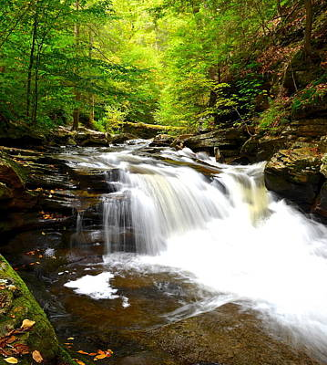 Tremendous Photograph - Conestoga Falls by Frozen in Time Fine Art Photography