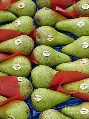 Pyrus Communis Photograph - Conference Pears by Martyn F. Chillmaid