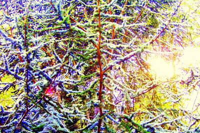 Photograph - Confetti Trees by Jodie Marie Anne Richardson Traugott          aka jm-ART
