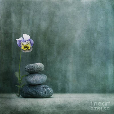 Still Life Wall Art - Photograph - Confidence by Priska Wettstein