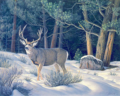 Mule Painting - Confrontation - Mule Deer Buck by Paul Krapf