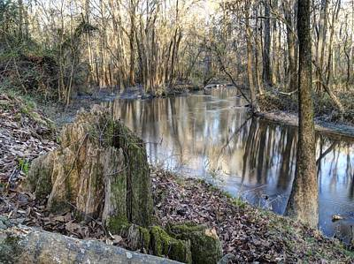 Photograph - Congaree Creek-1 by Charles Hite
