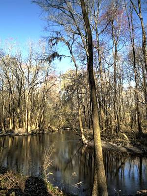 Photograph - Congaree Creek-2 by Charles Hite
