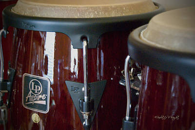 Photograph - Congas by Paulette B Wright