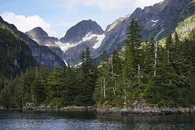 Mountain Photograph - Conifer Forest Inside Passage Prince by Hiroya Minakuchi