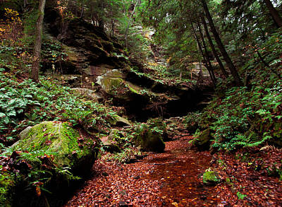 Art Print featuring the photograph Conkles Hollow Gorge by Haren Images- Kriss Haren