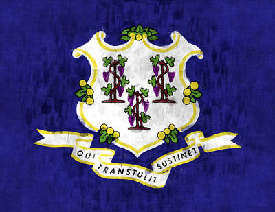 Connecticut Flag Art Print by World Art Prints And Designs