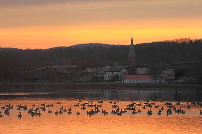 Photograph - Connecticut River Geese At Barton Cove by John Burk
