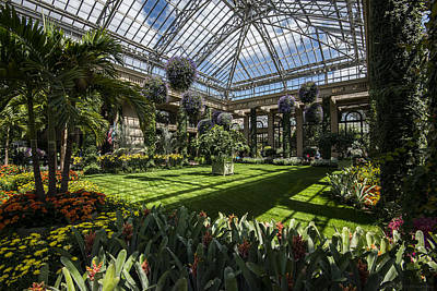 Conservatory Art Print by Phil Abrams