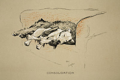 Terriers Drawing - Consolation, 1930, 1st Edition by Cecil Charles Windsor Aldin