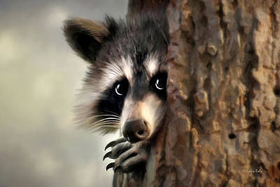 Raccoon Photograph - Conspicuous Bandit by Christina Rollo