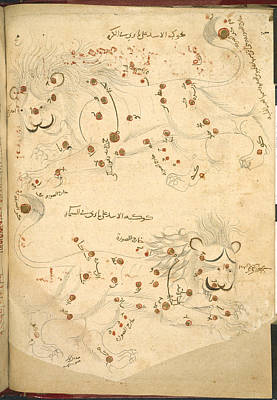 Constellation Of Leo Print by British Library