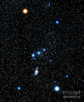 Blue Giant Star Photograph - Constellation Of Orion by John Chumack